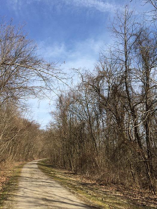 Bike trail outside West Newton